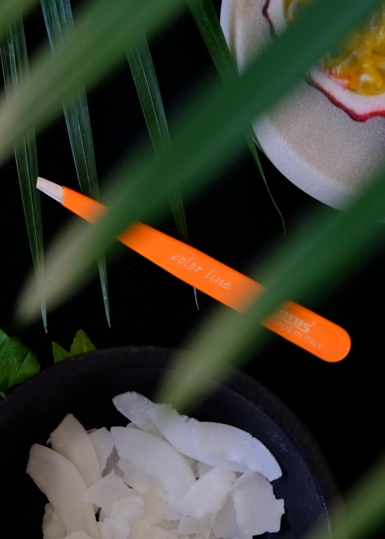 FP-Neon-Orange-Jungle-Bird-View-2015-WEB